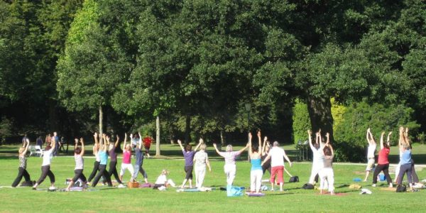 Yoga im Park 4